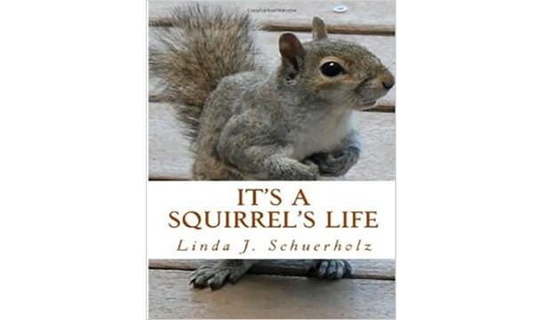 این زندگی یک سنجاب است !