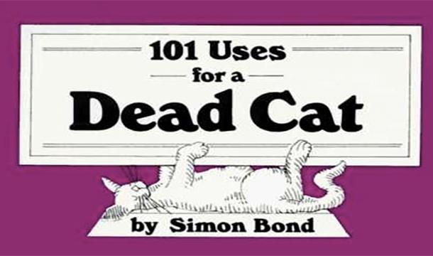 صد و یک استفاده برای گربه های مرده !