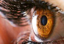 ۲۰ واقعیت شگفت انگیز درباره بدن انسان