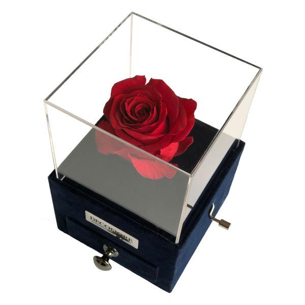 جعبه موزیکال کشودار رز جاودان دکوفیوره ملودی عاشقانه - به همراه کارت عاشقانه و پاکت مخصوص دکوفیوره
