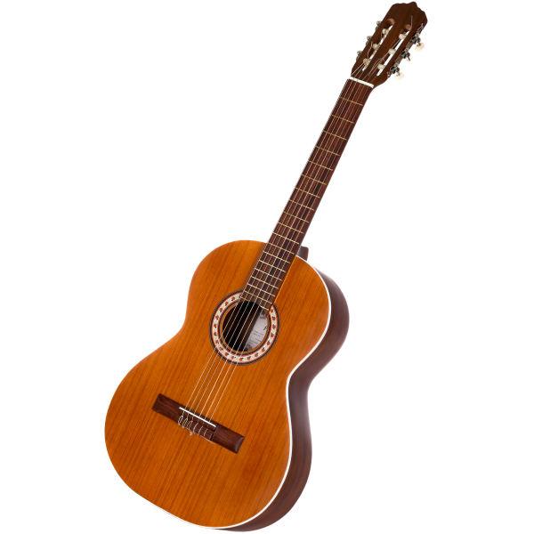 گیتار پارسی مدل  M5