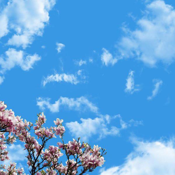 تایل سقفی آسمان مجازی مدل AZ028 سایز 60*60 سانتی متر