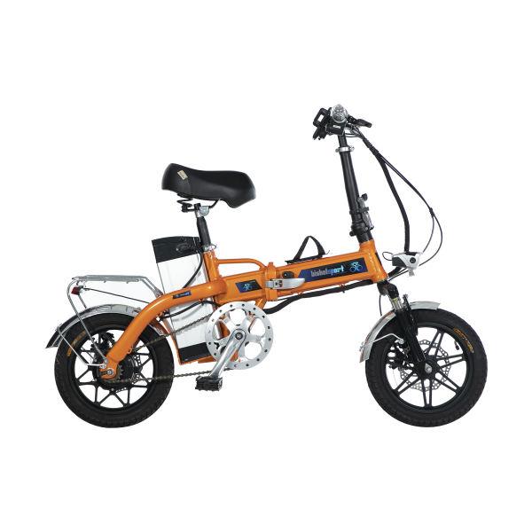 دوچرخه برقی بیشل اسپرت مدل YK-D8 کد 03 سایز 14