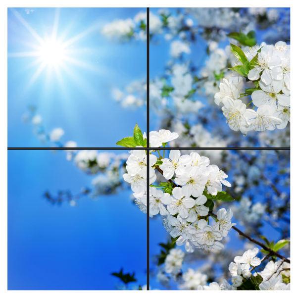 تایل سقفی آسمان مجازی طرح شکوفه و خورشید کد 0100 سایز 60x60 سانتی متر مجموعه 4 عددی