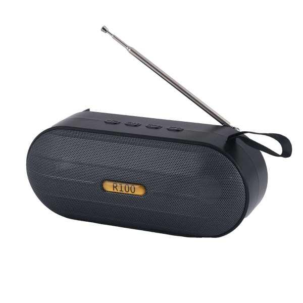 رادیو مدل R100
