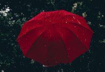 25 مدل چتر باکیفیت و محبوب با قیمت روز و خرید اینترنتی