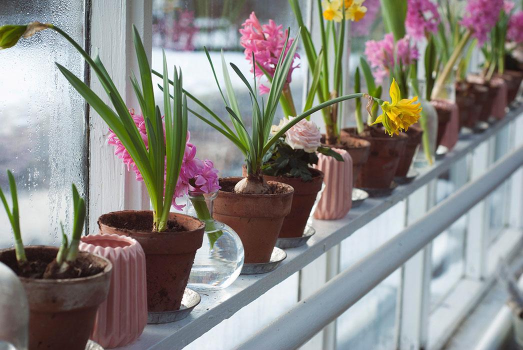 25 مدل گلدان زیبا و جذاب با قیمت روز و خرید اینترنتی