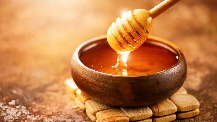 بردههای مصر و عسل