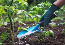 25 مدل بیلچه باغبانی باکیفیت و ارزان با قیمت روز و خرید اینترنتی