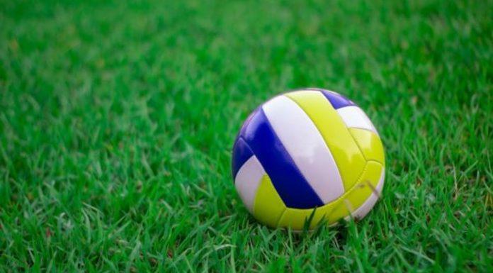 خرید توپ والیبال استاندارد