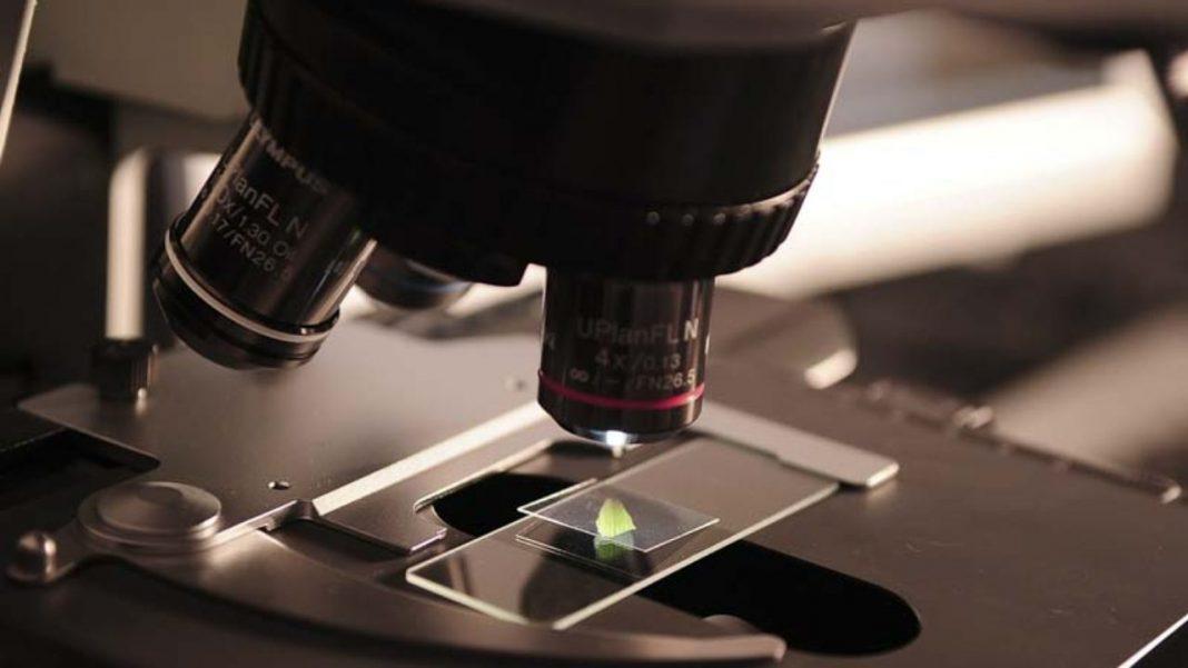راهنمای خرید میکروسکوپ