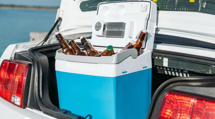 راهنمای خرید یخچال خودرو