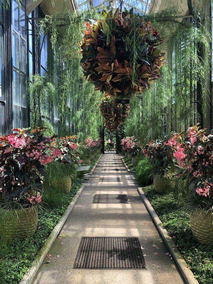 باغ لانگ وود