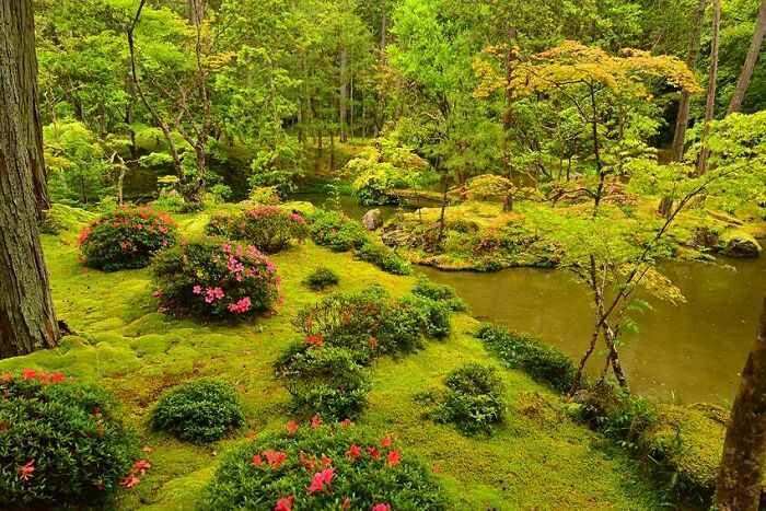 این باغ زیبا در کیوتو