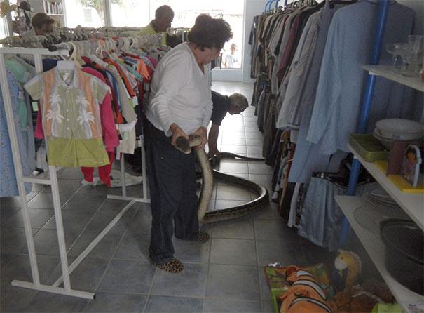 یک لباس فروشی معمولی در استرالیا